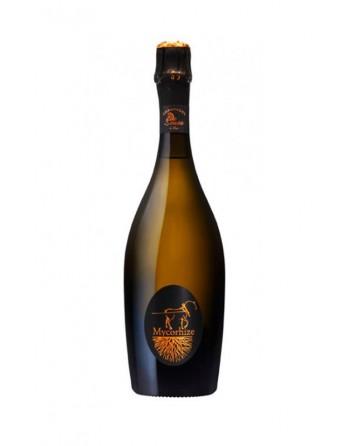 Champagne Sousa Mycorhize Grand Cru zona outlet