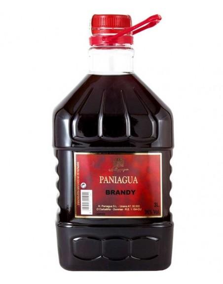 Brandy Paniagua 3 Lt.